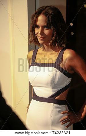 NEW YORK-OCT 16: Actress Halle Berry attends God's Love We Deliver, Golden Heart Awards on October 16, 2014 in New York City.