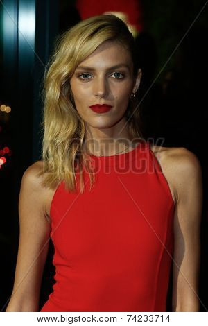 NEW YORK-OCT 16: Model Anja Rubik attends God's Love We Deliver, Golden Heart Awards on October 16, 2014 in New York City.