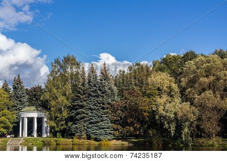 White gazebo on the background of trees