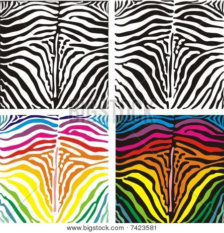 Vector background skin zebra
