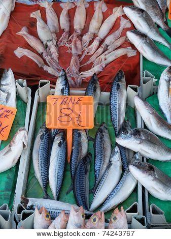 Fish On Stalls