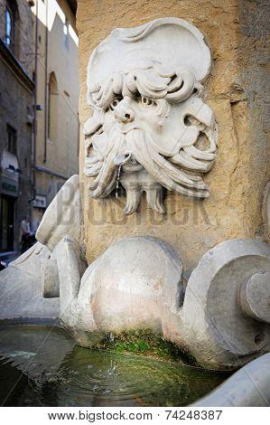 Fountain Of Buontalenti