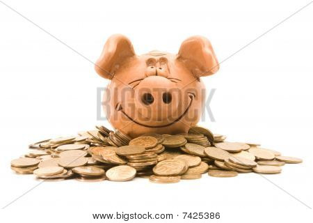Pig Bank Seat On A Heap Of Coins