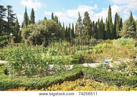 Flower Beds In Nikitsky Botanical Garden, Yalta