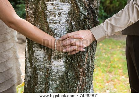 Holding hands: couple embracing a tree.
