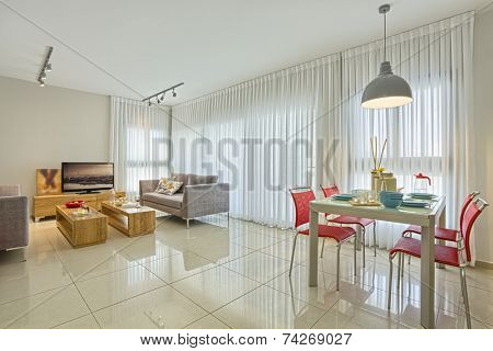 Luxury Modern Living Room and Dining Room