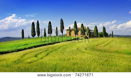 beautiful  landscapes of Toscana. Italy