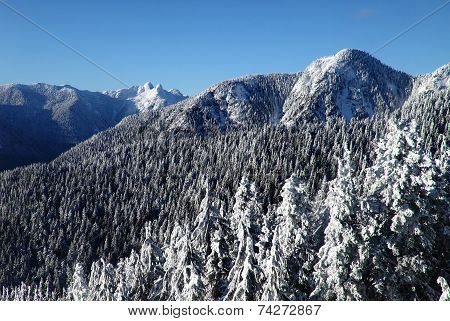 lions peaks from Grouse Mountain Vancouver