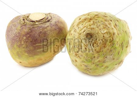 fresh turnip (Brassica rapa rapa) and a celery root(Apium graveolens var. rapaceum) on a white background