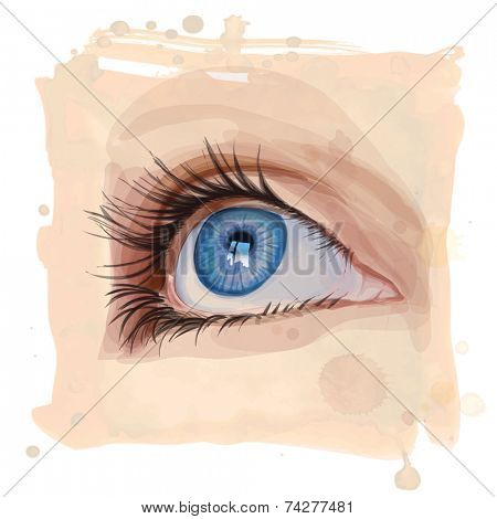 Vector drawing of the girl's eyes on watercolor background
