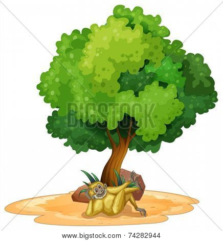 Illustration of a gibbon relaxing under a tree