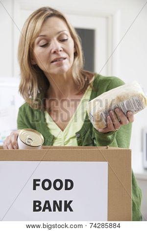 Woman Making Donation To Food Bank