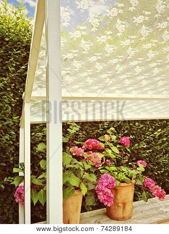 Summer Veranda With Blooming Gardenias