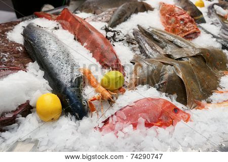 A lot of fresh saltwater fish and seafood on market stall