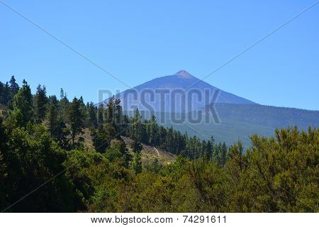 Teide National Park. Tenerife, Canary Islands