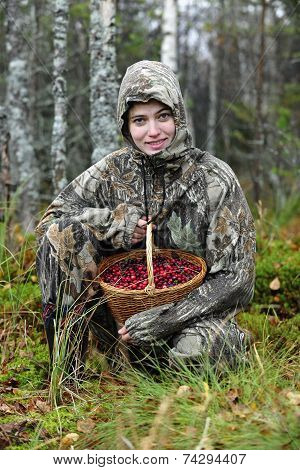 Young Woman Pick Cranberry On A Bog.