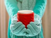 image of hot-weather  - Female hands holding knitted winter mug close up - JPG