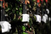 stock photo of akm  - Detail with a soldier hand on a Kalashnikov AKM rifle during a military parade  - JPG