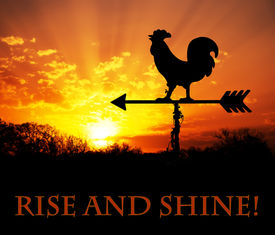 stock photo of roosters  - Rooster weather vane against sunrise - JPG