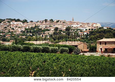 Vineyard In Provence With  Village On Back