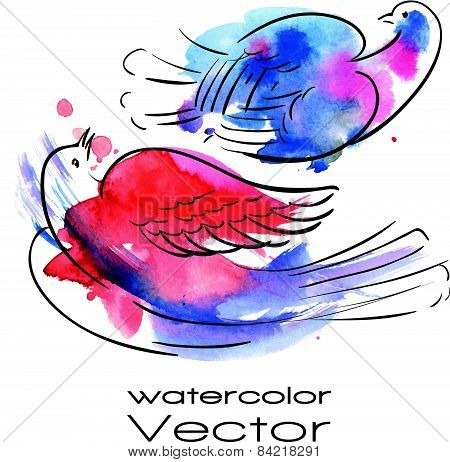 Vector watercolor birds