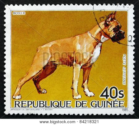 Postage Stamp Guinea 1985 Boxer, Dog
