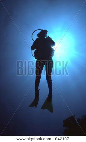 Woman Scuba Diver Silhouette