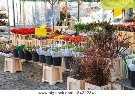 Seller Packs Flowers In The Market  In The Dutch Town Den Bosch.