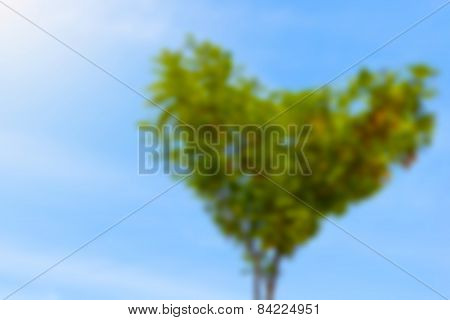 Blurred Crown Of Tree With Heart-shaped Leaves On Blue Sky Useful As Background