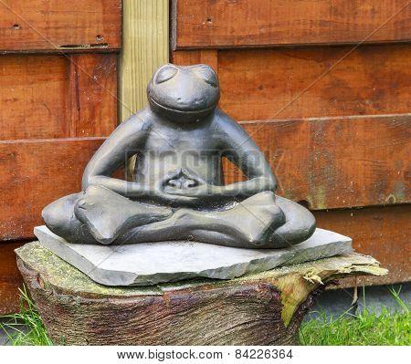 Frog Meditating