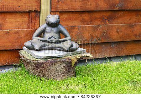 Meditating Frog