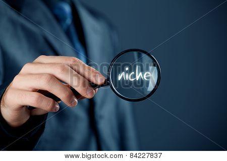 Find Market Niche