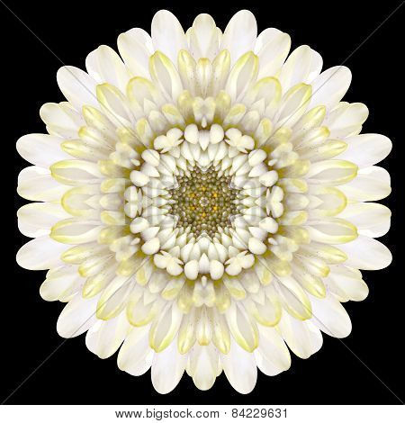 White Flower Mandala Kaleidoscope Isolated On Black