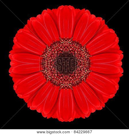Red Flower Mandala Kaleidoscope Isolated On Black