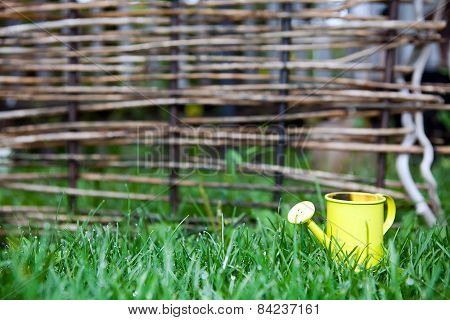 Yellow Watering Can In Green Grass