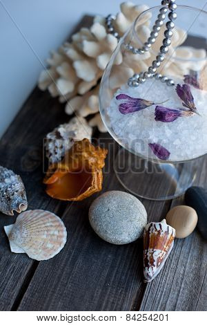 Seashells And Coral On The Wooden Table