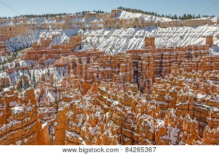 Hoodoos And More At Bryce