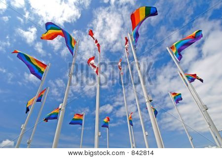 Pride Flags