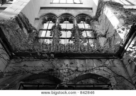 Spooky looking building with ivy growing up it