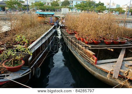 Boat, Spring Flower, Vietnam Tet
