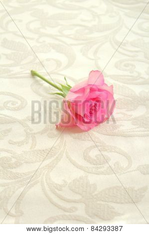 Pink Rose On Cream Table Cloth Close Up