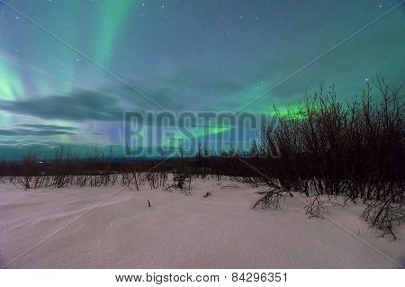 Beautiful Aurora
