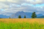 pic of unique landscape  - beautiful landscape view of the Glacier National Park in summer - JPG