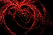 wild hearts on black