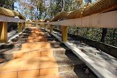 picture of stairway  - Stairway up the mountain in a Thailand temple - JPG