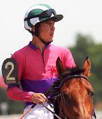 foto of stallion  - The jockey and arab stallion in Northern Caucasus  - JPG