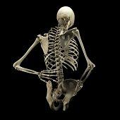 foto of skeleton  - Human skeleton isolated on black background  - JPG