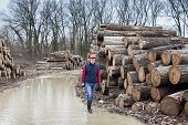 foto of ax  - Young lumberjack carrying an ax and walking beside cut trunks in forest - JPG