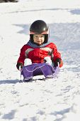 image of descending  - cute little boy descended the hill bobsledding - JPG