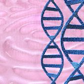 image of dna fingerprinting  - Dna strands in front of a fingerprint  - JPG